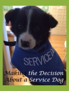 servicedogpost